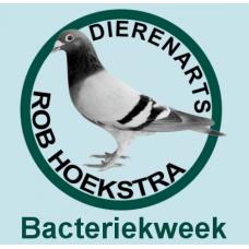Bacteriekweek